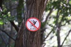 Shilinxia Scenic Area