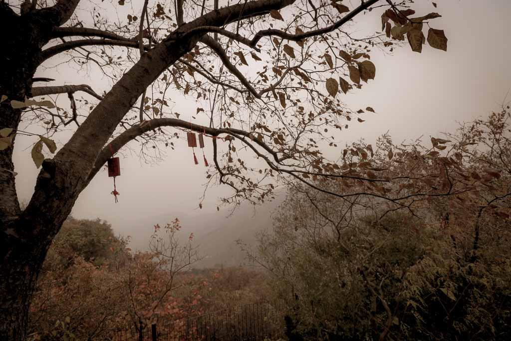 Duftberge im Herbst